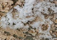 image-humidite-en-sous-sol-2